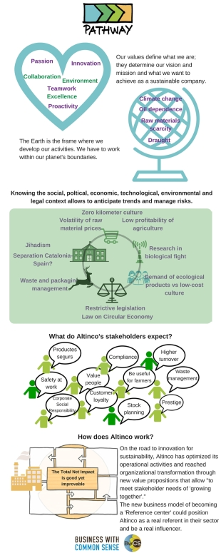 Infogràfic PATHWAY ALTINCO ENG