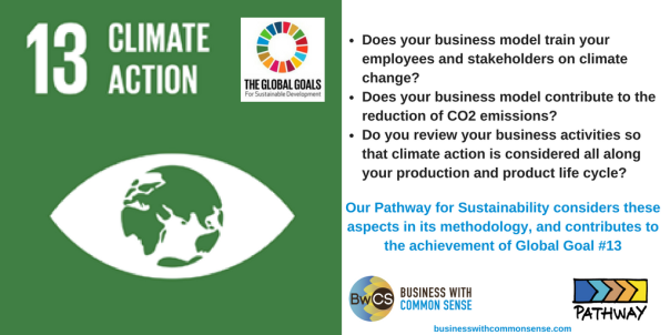 Goal 13 Climate Action-2