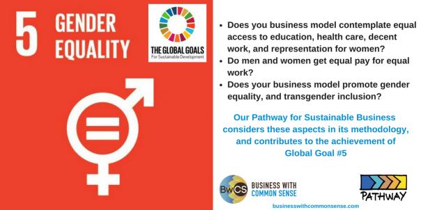 Goal 5 Gender Equality-3